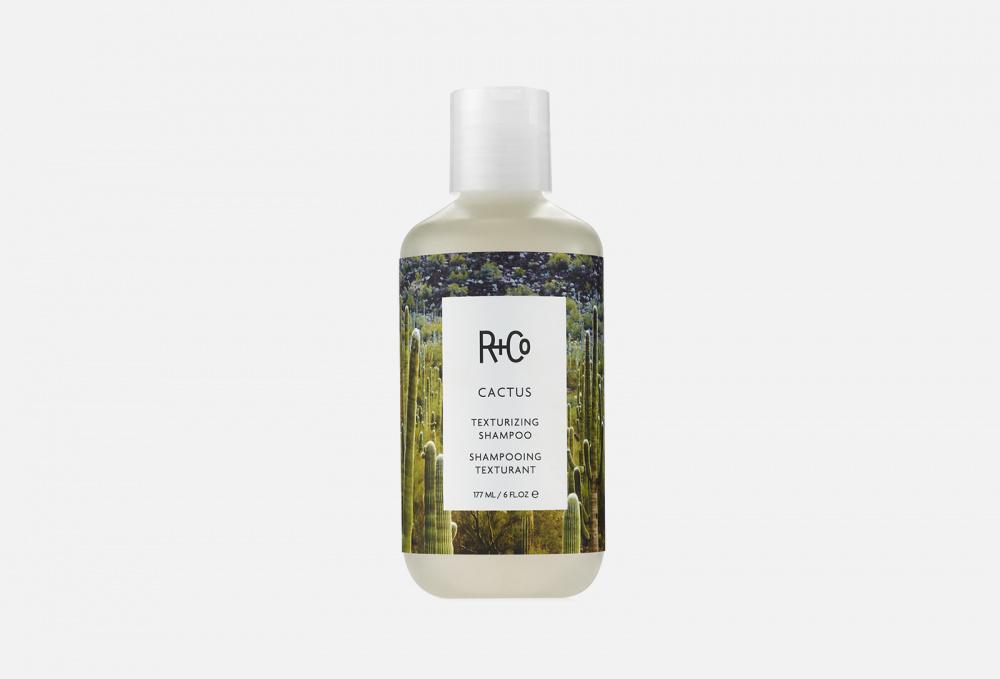 Фото - Текстурирующий шампунь R+CO Cactus Texturizing Shampoo 177 мл текстурирующий шампунь r co cactus texturizing shampoo 177 мл